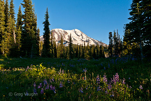 Mount Adams Wilderness, Washington