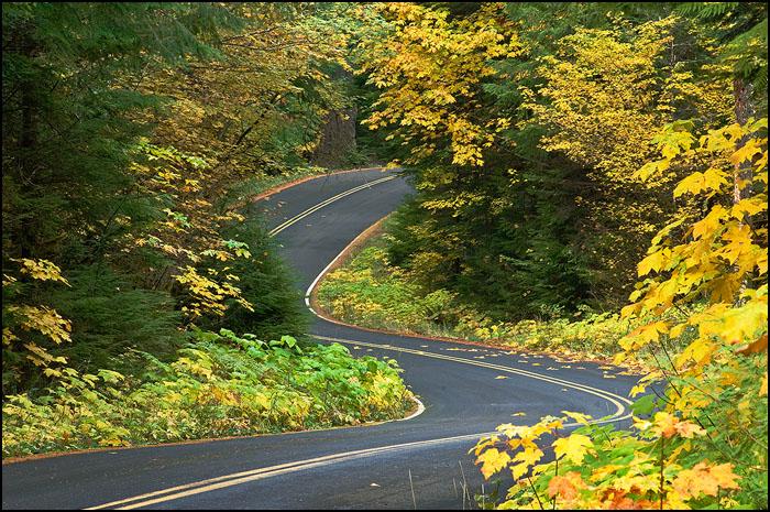 Aufderheide Drive in Autumn.