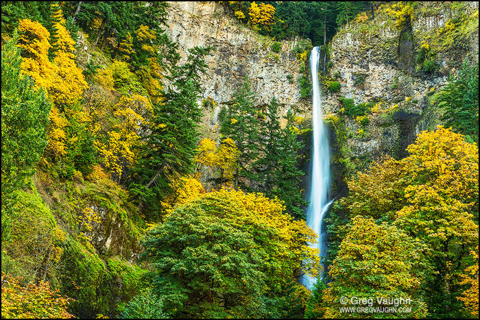 Multnomah Falls with trees in fall color