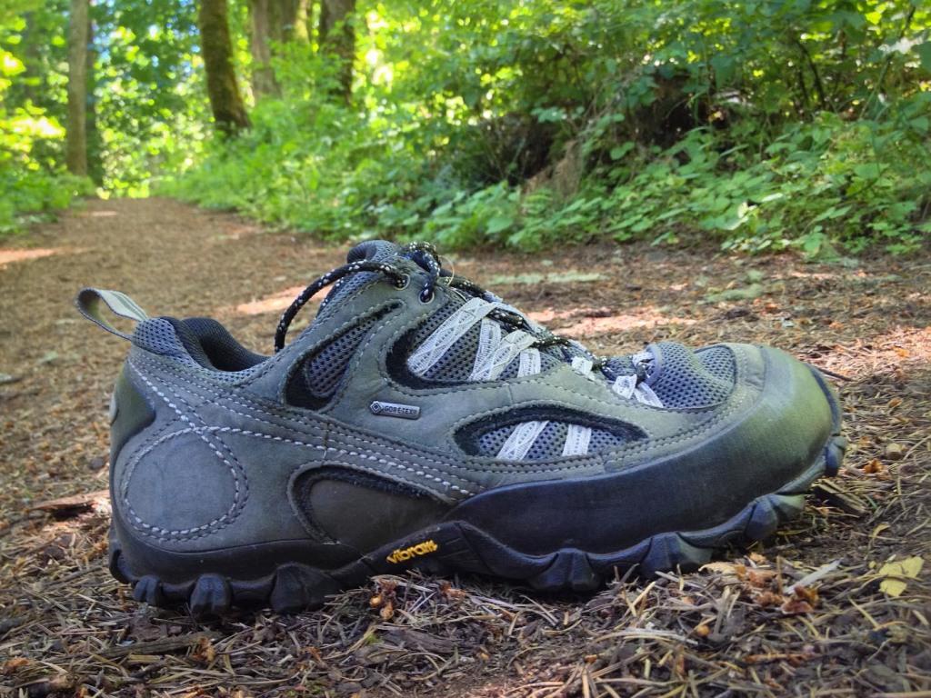 Patagonia Drifter A/C GoreTex trail shoe.