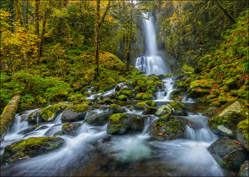 Lower Kentucky Falls; Coast Range Mountains, Oregon.