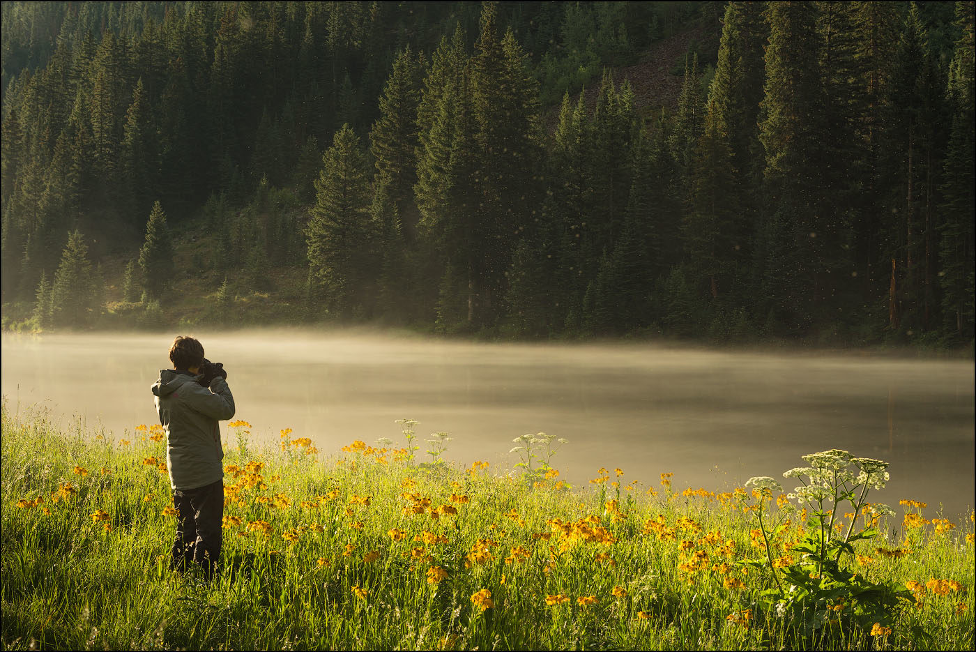 Photographer in meadow along river
