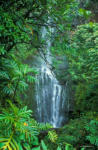 Top 10 Places on Maui for Nature and Landscape Photography